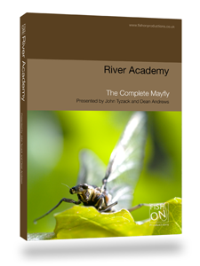 The Complete Mayfly